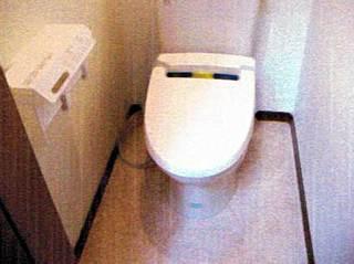 kamigyo-K-toile02.jpg
